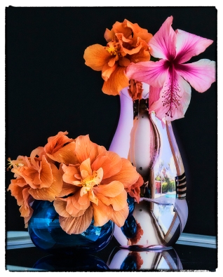 pink-vase-with-hibiscus-2-resized