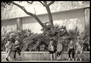 senior-row