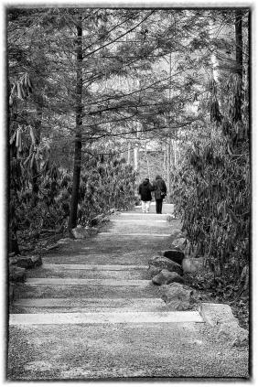 pittsburgh 8